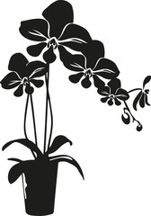 black cartoon vector orchid