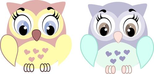 cute couple owl