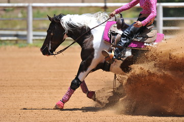 A side view of a rider and horse sliding ahead in the dust.