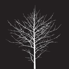Shape of white Tree. Vector Illustration.
