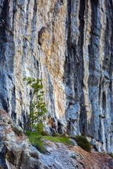 Limestone cliffs on mountain