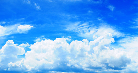 Wall Mural - Cloudscape. Blue sky and white cloud. Sunny day