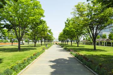 写真素材「東京臨海広域 防災公園」