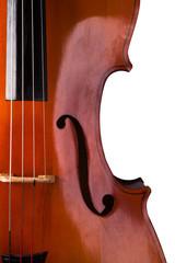 Cello on a white background.