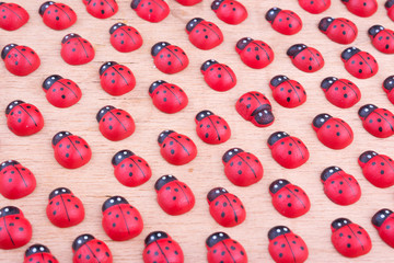 Opposition with wooden ladybird