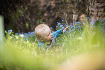 Baby erkundet den Garten