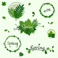 Set of Spring badges, decoration with green leaves on light green background
