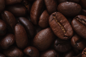 coffee beans photo, coffee beans, coffee background, coffee pattern, coffee grains, coffee sale, roasted coffee, brown coffee, coffee wallpaper, coffee macro