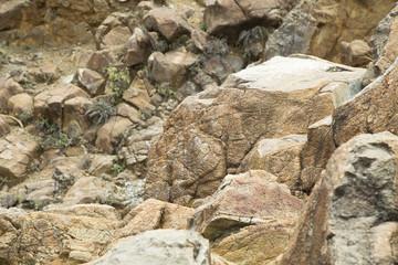 Stone textures in the desert