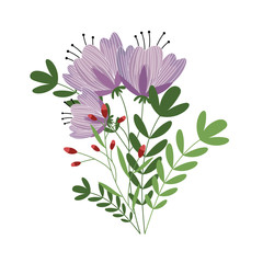 Flowers isolated vector on white background. Cute illustration.