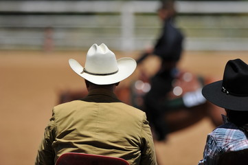 View on the backs of judges with a rider on a background during the NRHA competition