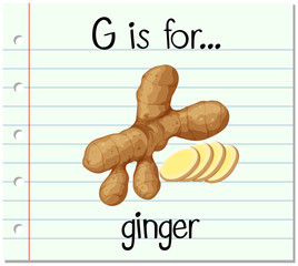 Flashcard alphabet G is for ginger