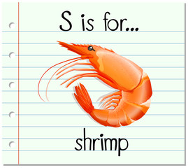 Flashcard letter S is for shrimp