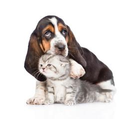 basset hound puppy embracing tiny kitten. isolated on white back