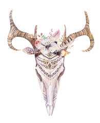 Watercolor bohemian deer skull.  Western mammals. Watercolour  d
