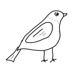 Simple doodle of a bird