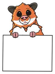 hamster, pet, comic, cartoon, isolated, animal, rodent, blank, blank, banner, poster, plate, sheet, paper, hold, peek, peek up