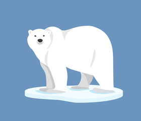 Polar bear standing on ice floe, side view