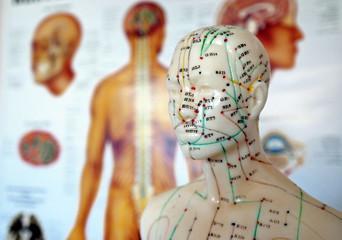 Meridiane der traditionellen chinesischen Akupunktur