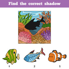Find the correct shadow. Find fish by shadow