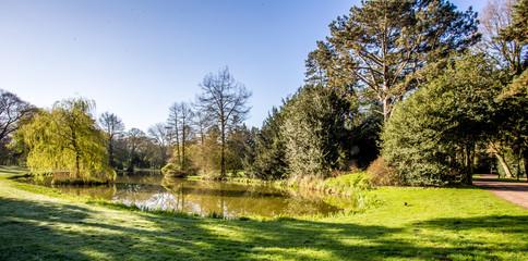 Teich im Bürgerpark von Bremen an einem sonnigen Frühlingstag