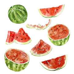 set of watercolor watermelon