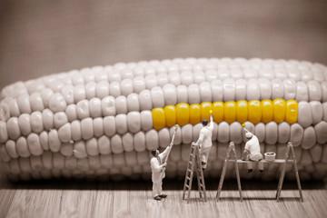Miniature painters coloring corncob. Macro photo