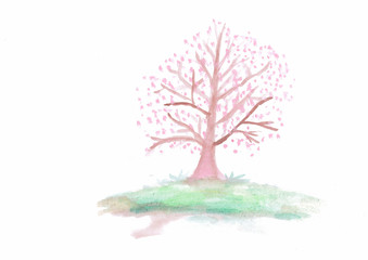 Watercolor painting of Sakura tree
