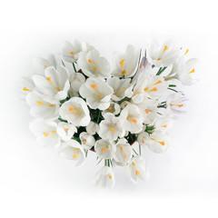spring bouquet of flowers, white crocus snowdrops