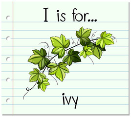 Flashcard alphabet I is for ivy