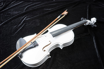White violin isolated on black background