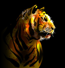Digital painting of a tiger's head. Vector illustration