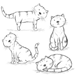 Vector Set of Sketch Cat Characters