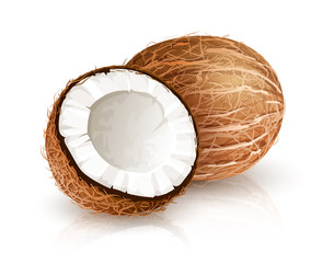 Coconut tropical nut fruit with cut eps10 vector illustration isolated