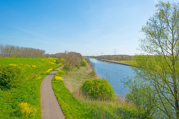 Canal through a sunny landscape in spring