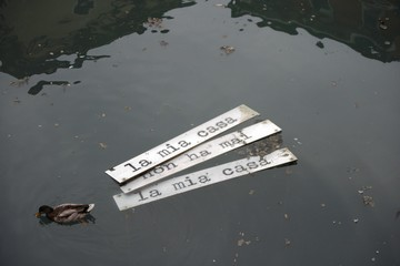 Duck and sign in the water
