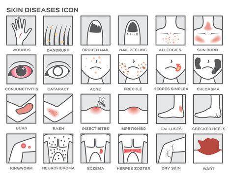 skin diseases icon