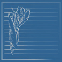 Graphic flower, sketch of tulip on blue background. Vector floral illustration in vintage style. Hand drawn artwork. Template for wedding invitation, card, congratulation, greeting. Place for text.