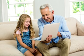 Smiling granddad and girl using laptop