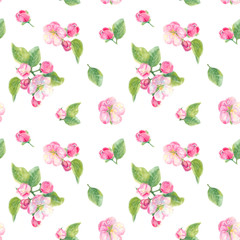 Watercolor floral seamless pattern with spring blossoms