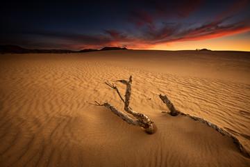Sunset at Corralejo Dunes