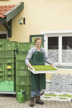 Portrait of an organic farmer holding a plant crate for salad in farm, Bavaria, Germany