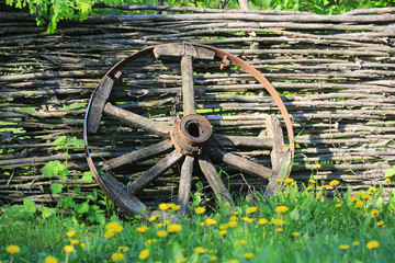 old brocken wooden carriage wheel on wattled fence background
