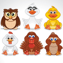 Set of Various Cartoon Birds. Vector