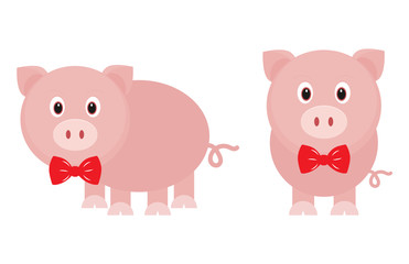 funny pig with tie set