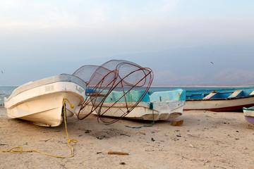 in oman boat in the coastline and seagull near ocean