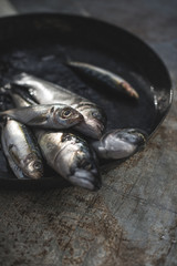 Raw sea bream, sea bass, sardines and mackerel fish in frying pan
