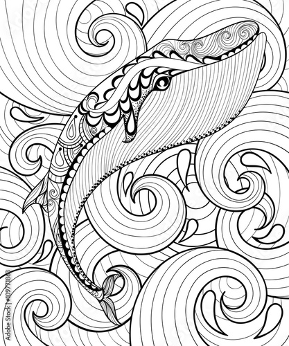 Vector Zentangle Whale In Sea Print For Adult Coloring Page A4