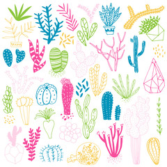 Hand drawn cactus and succulents. Vector set with succulents flowers, concrete pots and glass terrariums. Vector illustration.