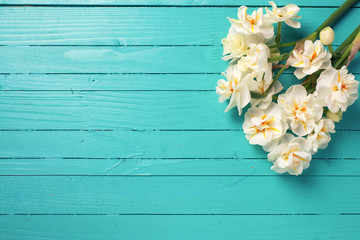 White  daffodils or narcissus  on green painted wooden planks.